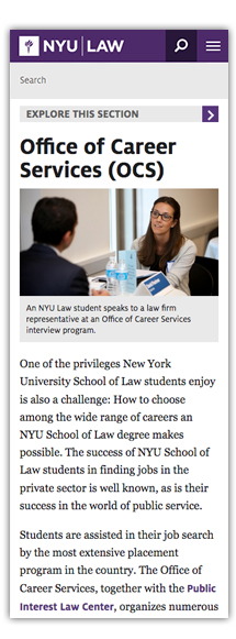 NYU Law School – Luis F  Delgado
